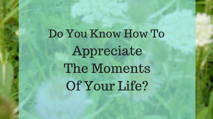 Appreciate The Moments Of Your Life