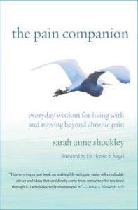 the pain companion